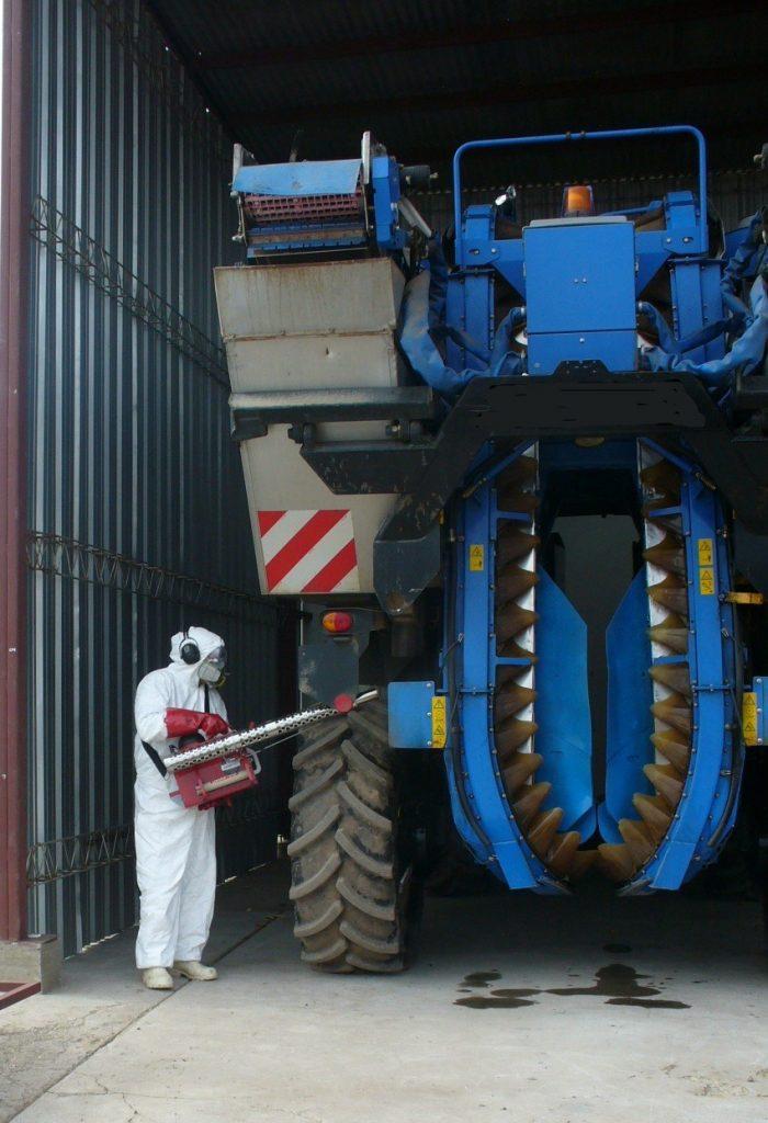 Lobesia botrana: el Iscamen recuerda medidas preventivas de control en  épocas de cosecha | El Cuyano
